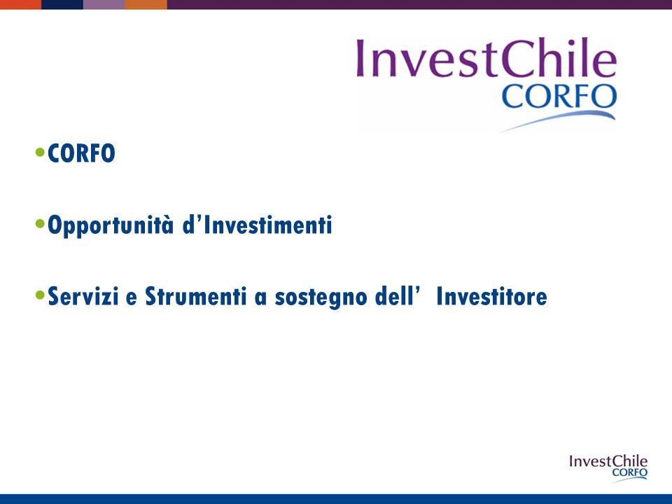 CORFO Opportunità dInvestimenti Servizi e Strumenti a sostegno dell Investitore