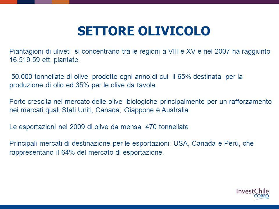 SETTORE OLIVICOLO Piantagioni di uliveti si concentrano tra le regioni a VIII e XV e nel 2007 ha raggiunto 16,519.59 ett.