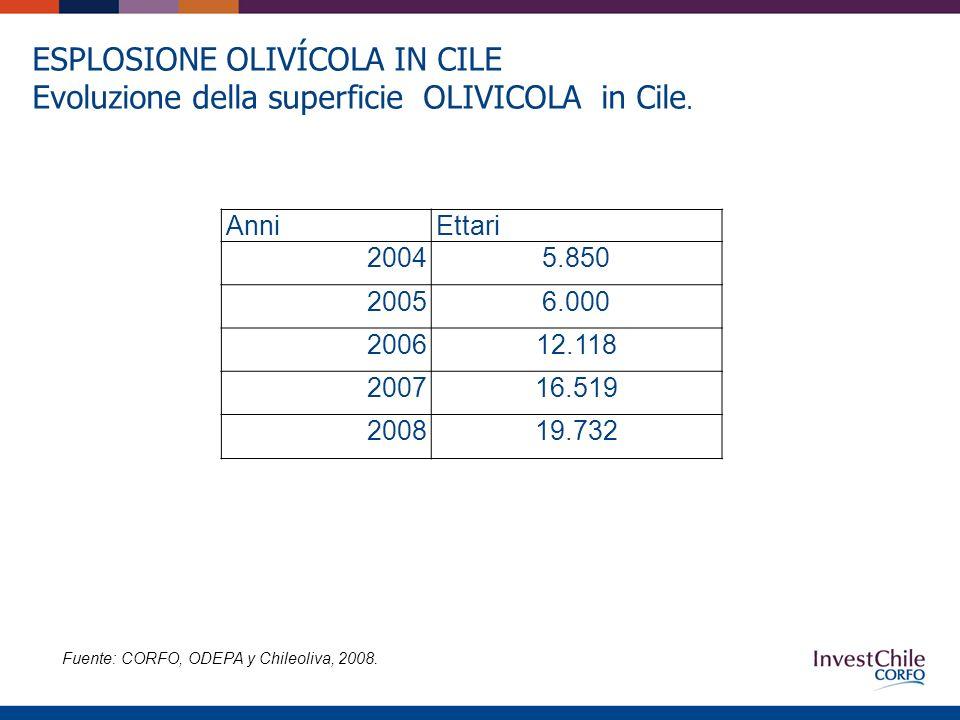 AnniEttari 20045.850 20056.000 200612.118 200716.519 200819.732 ESPLOSIONE OLIVÍCOLA IN CILE Evoluzione della superficie OLIVICOLA in Cile.