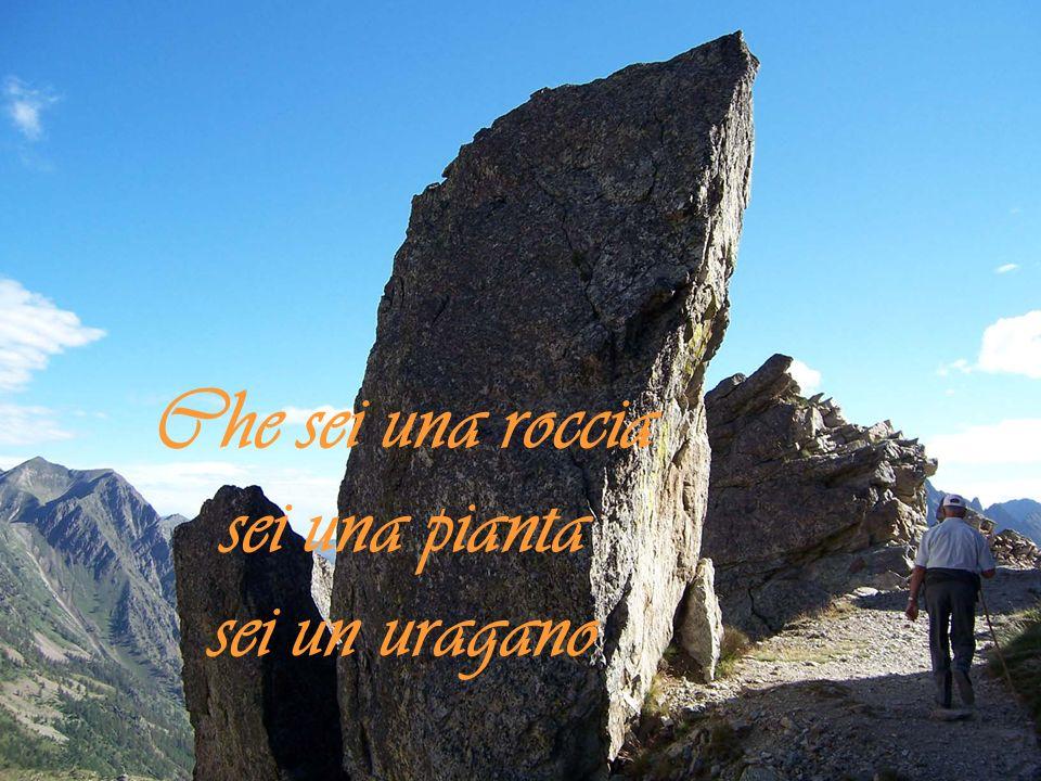 Che sei una roccia sei una pianta sei un uragano