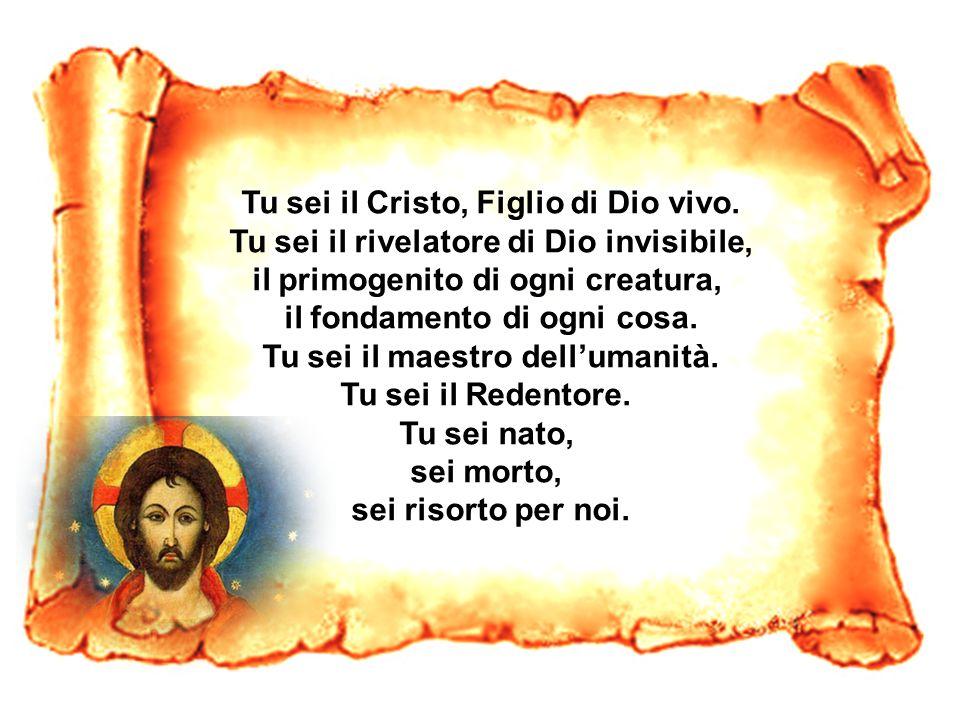 Tu sei il Cristo, Figlio di Dio vivo. Tu sei il rivelatore di Dio invisibile, il primogenito di ogni creatura, il fondamento di ogni cosa. Tu sei il m