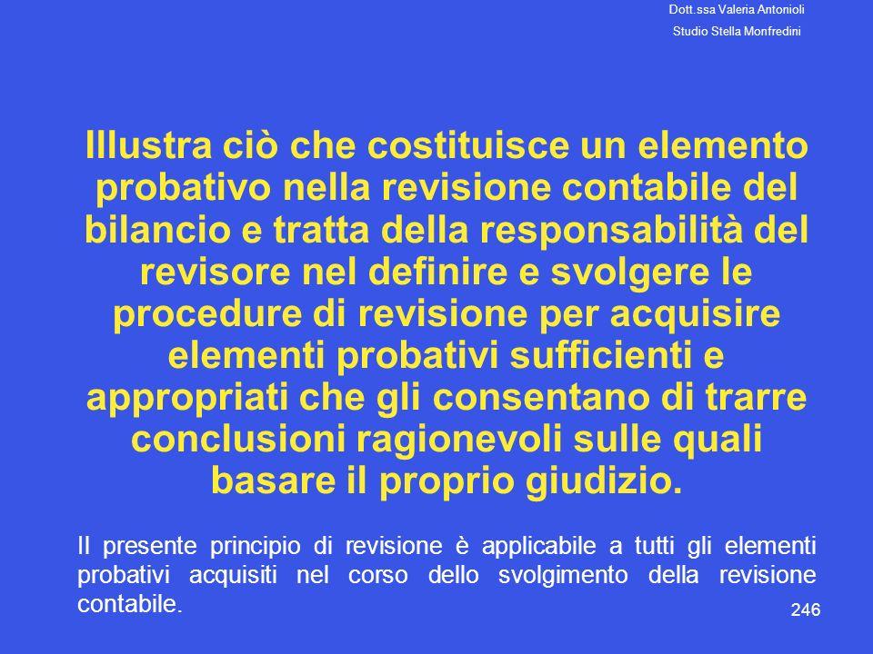 246 Illustra ciò che costituisce un elemento probativo nella revisione contabile del bilancio e tratta della responsabilità del revisore nel definire