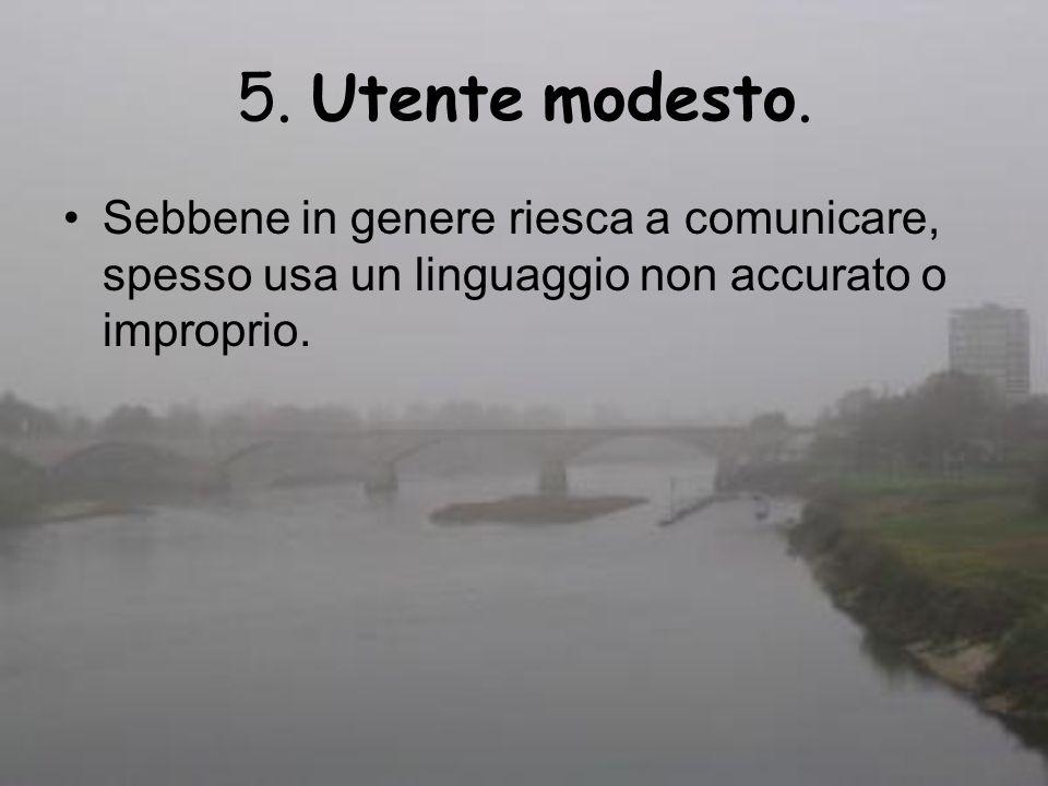 5. Utente modesto. Sebbene in genere riesca a comunicare, spesso usa un linguaggio non accurato o improprio.