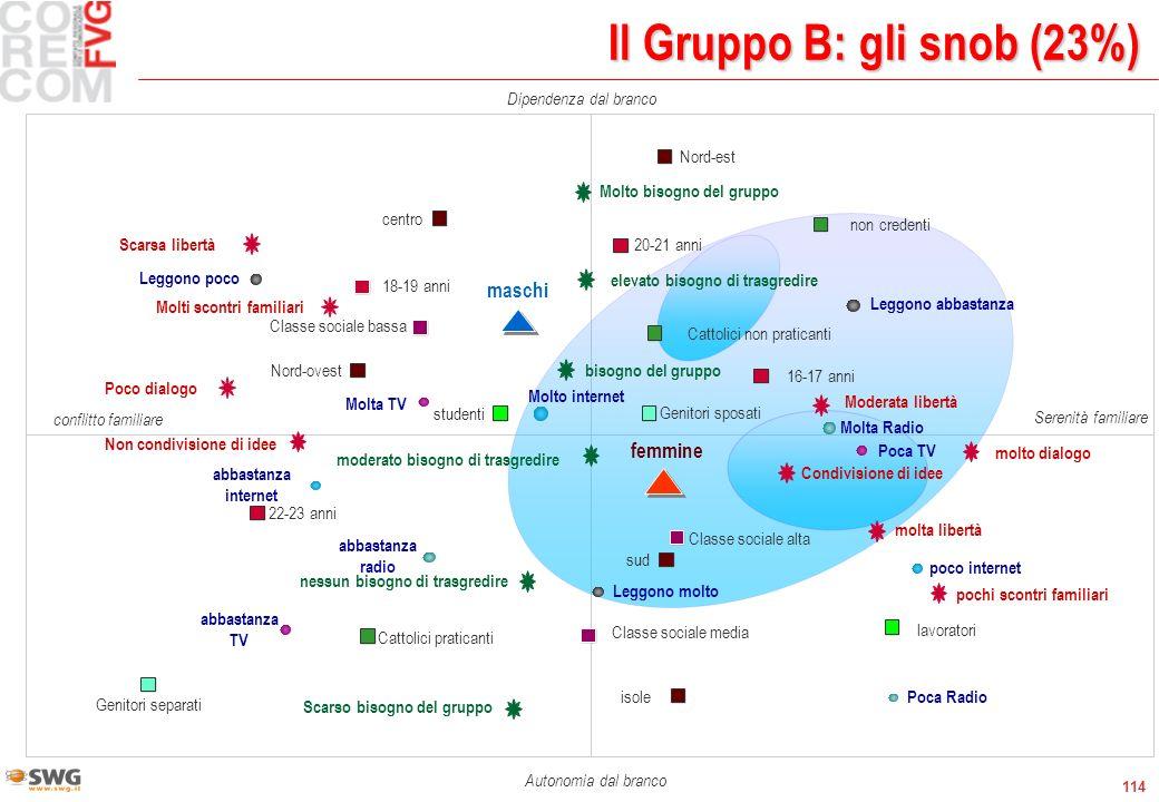 114 Il Gruppo B: gli snob (23%) Molto bisogno del gruppo moderato bisogno di trasgredire nessun bisogno di trasgredire bisogno del gruppo Scarso bisog
