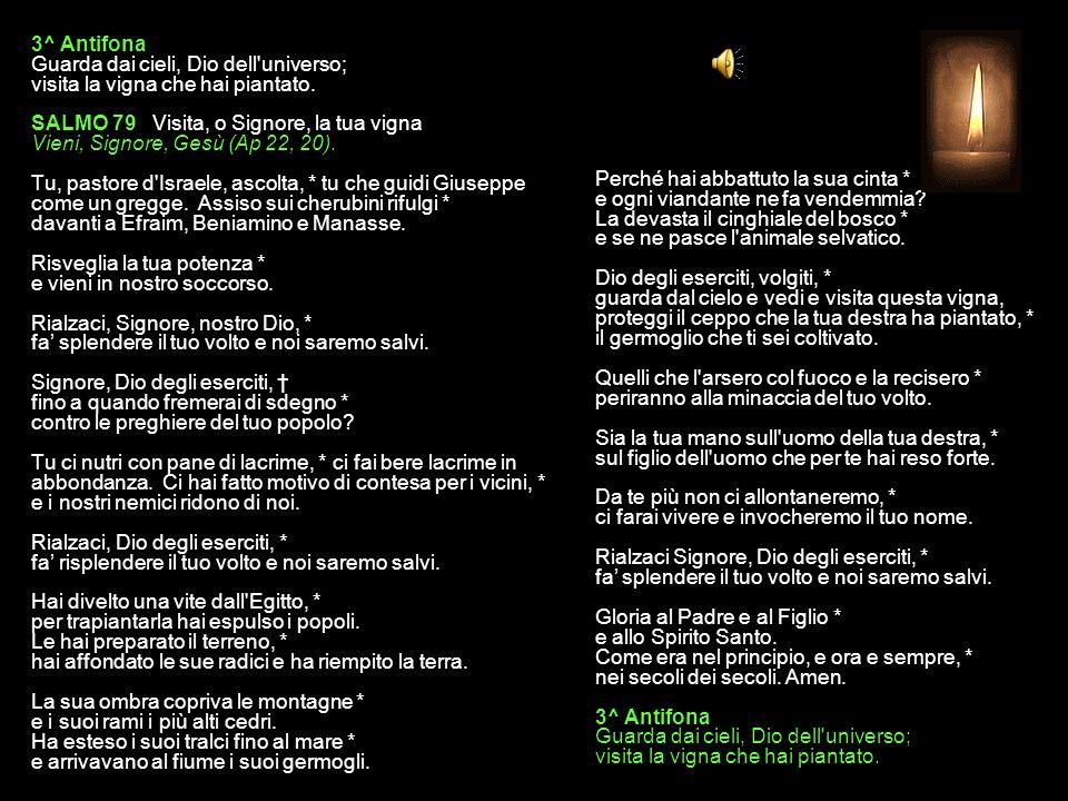 2^ Antifona Aiutaci, Dio nostra salvezza, perdona i nostri errori. SALMO 78, 1-5. 8-11. 13 Lamento per la distruzione di Gerusalemme Se avessi compres