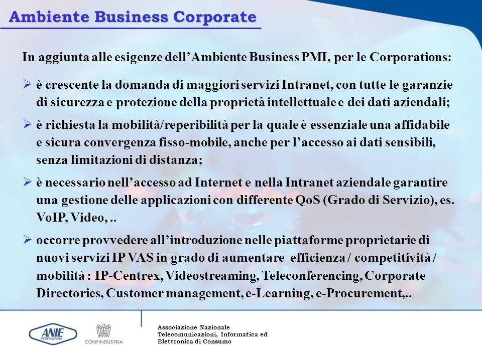 Associazione Nazionale Telecomunicazioni, Informatica ed Elettronica di Consumo In aggiunta alle esigenze dellAmbiente Business PMI, per le Corporatio