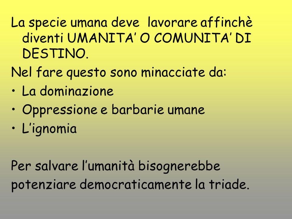 La specie umana deve lavorare affinchè diventi UMANITA O COMUNITA DI DESTINO.