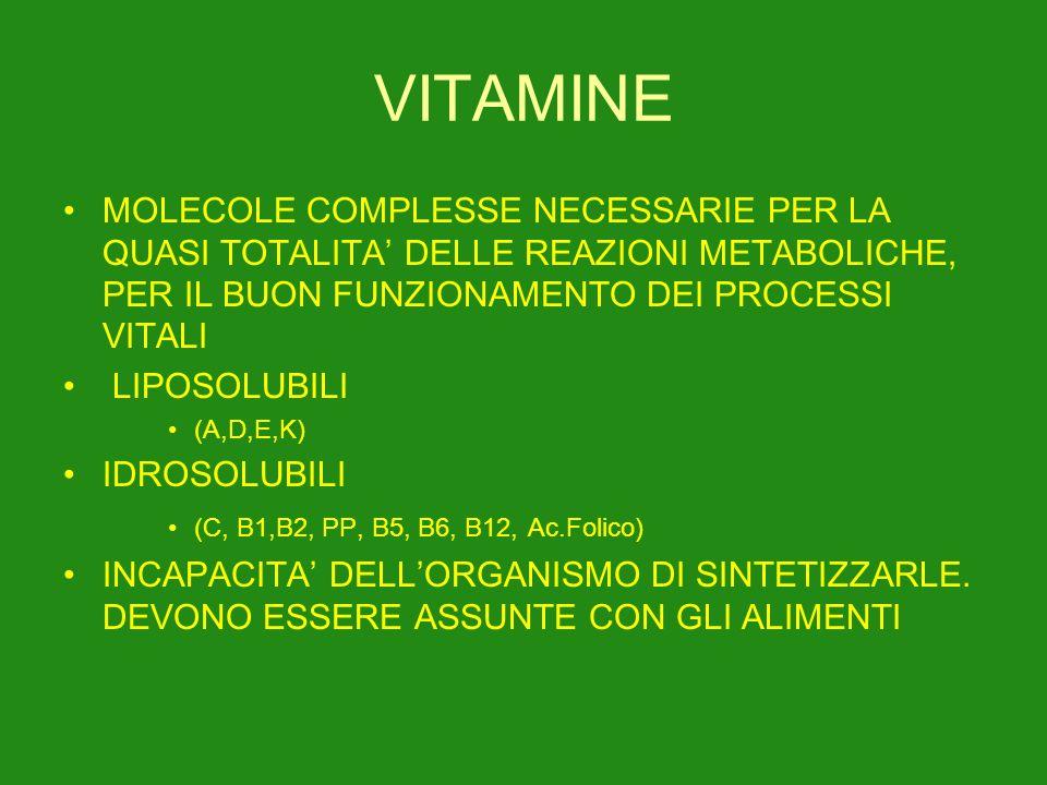 VITAMINE MOLECOLE COMPLESSE NECESSARIE PER LA QUASI TOTALITA DELLE REAZIONI METABOLICHE, PER IL BUON FUNZIONAMENTO DEI PROCESSI VITALI LIPOSOLUBILI (A,D,E,K) IDROSOLUBILI (C, B1,B2, PP, B5, B6, B12, Ac.Folico) INCAPACITA DELLORGANISMO DI SINTETIZZARLE.