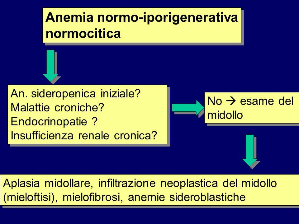 Anemia normo-iporigenerativa normocitica An. sideropenica iniziale? Malattie croniche? Endocrinopatie ? Insufficienza renale cronica? No esame del mid