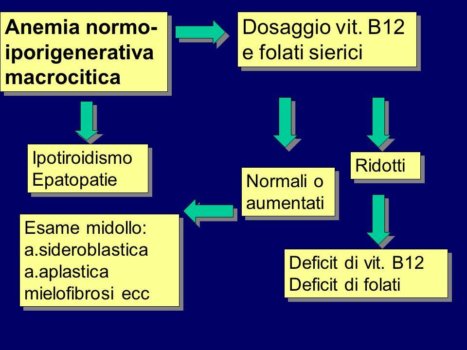Anemia normo- iporigenerativa macrocitica Dosaggio vit. B12 e folati sierici Ridotti Deficit di vit. B12 Deficit di folati Normali o aumentati Esame m