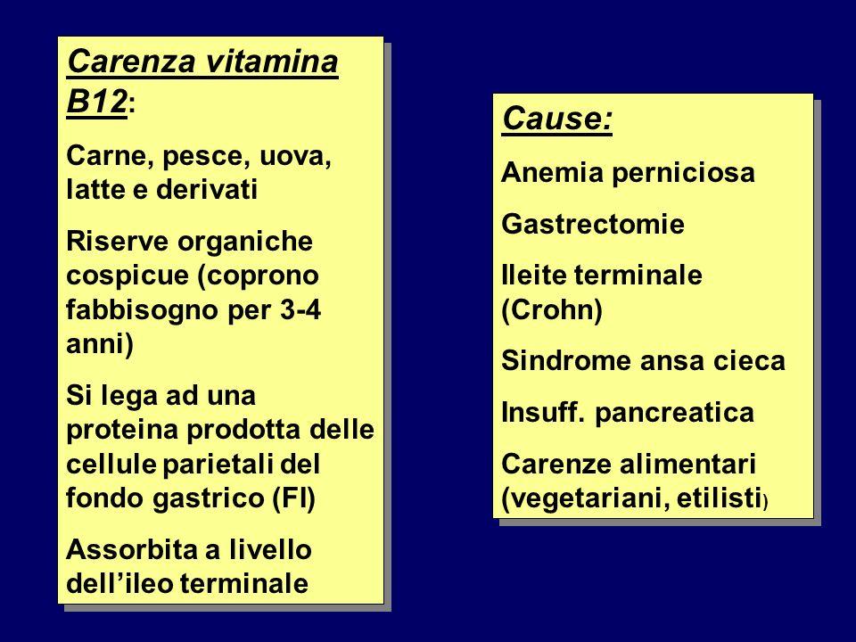 Carenza vitamina B12 : Carne, pesce, uova, latte e derivati Riserve organiche cospicue (coprono fabbisogno per 3-4 anni) Si lega ad una proteina prodo