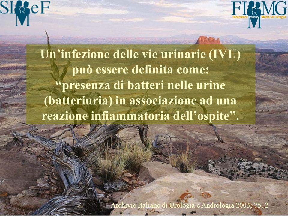Uninfezione delle vie urinarie (IVU) può essere definita come: presenza di batteri nelle urine (batteriuria) in associazione ad una reazione infiammat