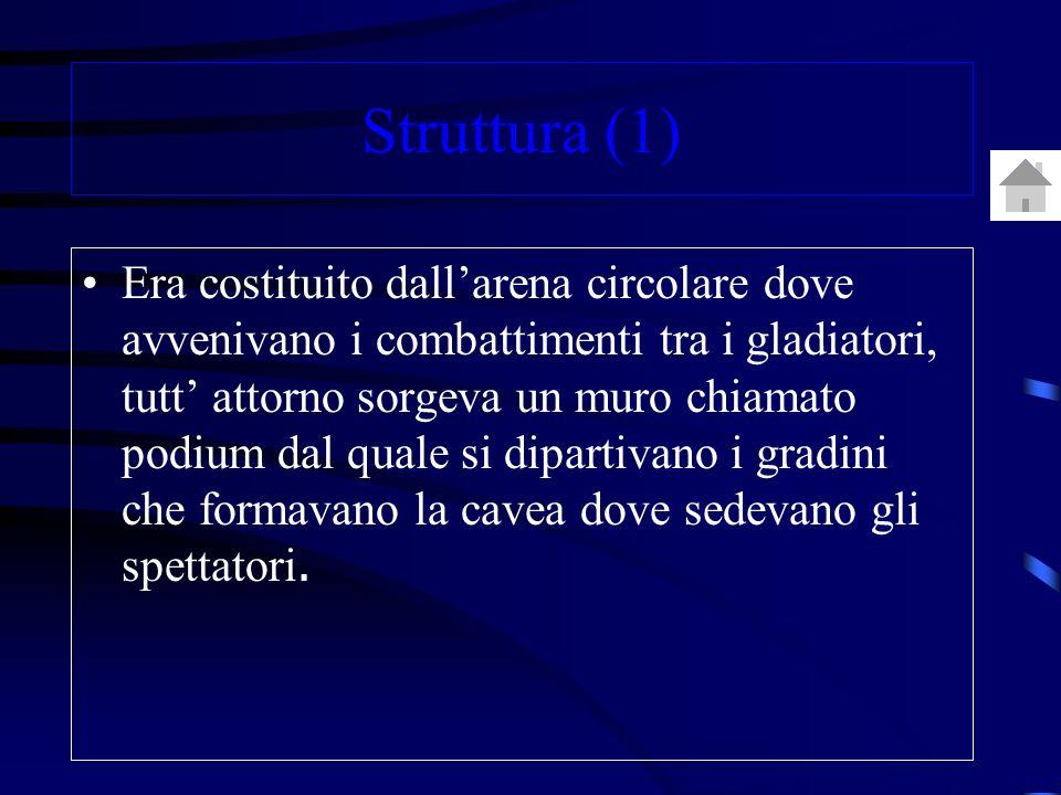 Struttura (1) Era costituito dallarena circolare dove avvenivano i combattimenti tra i gladiatori, tutt attorno sorgeva un muro chiamato podium dal quale si dipartivano i gradini che formavano la cavea dove sedevano gli spettatori.