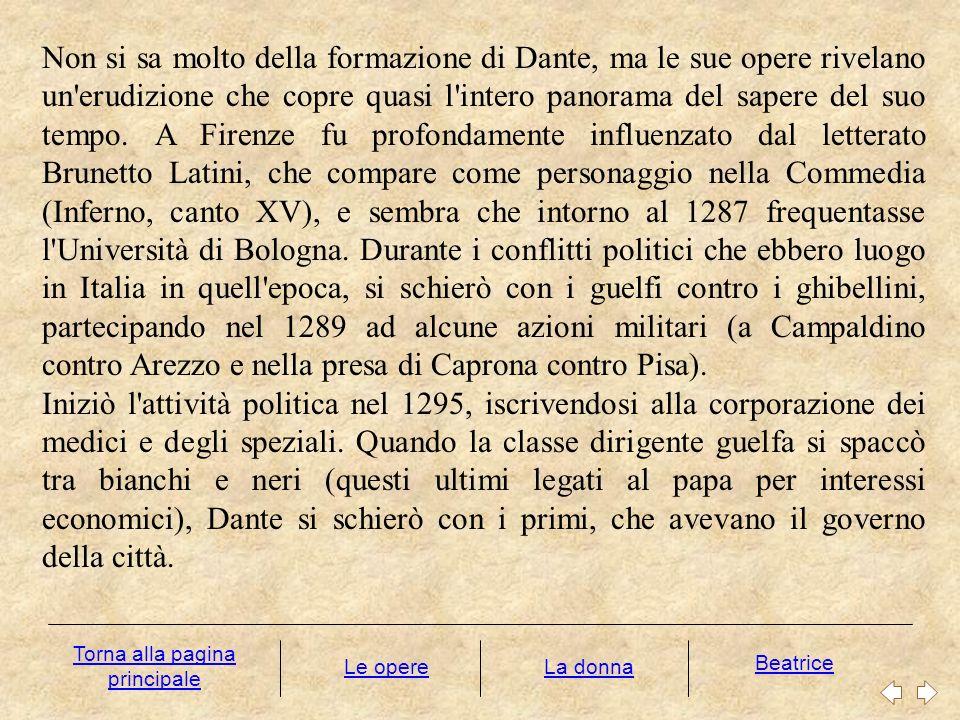 Non si sa molto della formazione di Dante, ma le sue opere rivelano un'erudizione che copre quasi l'intero panorama del sapere del suo tempo. A Firenz