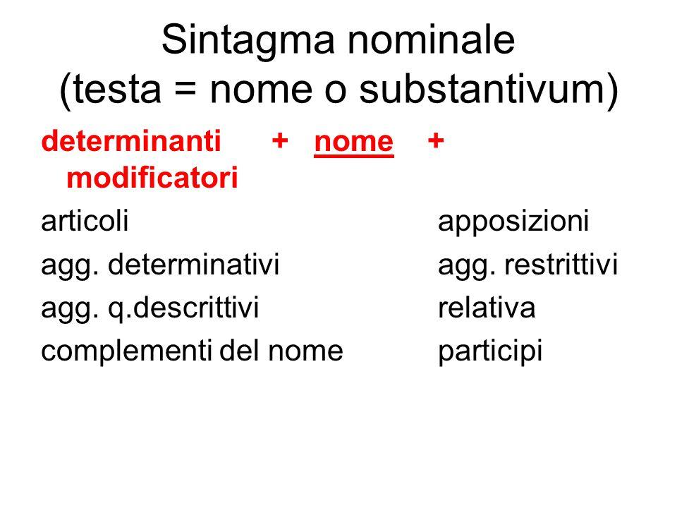 Sintagma nominale (testa = nome o substantivum) determinanti + nome + modificatori articoli apposizioni agg. determinativi agg. restrittivi agg. q.des