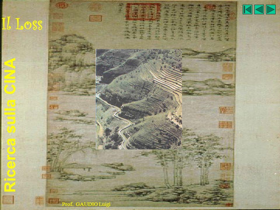 Ricerca sulla CINA Prof. GAUDIO Luigi Laghi principali Qinghai Hu 4000 Km², Dongting Hu 3100 Km²