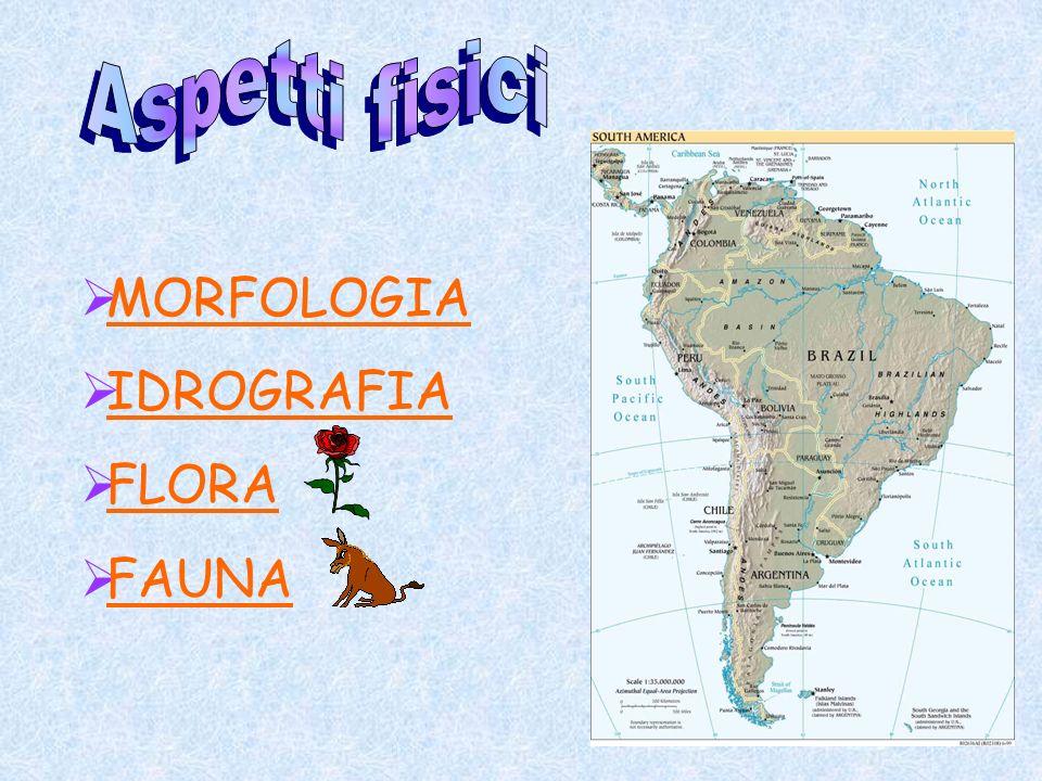 MORFOLOGIA IDROGRAFIA FLORA FAUNA