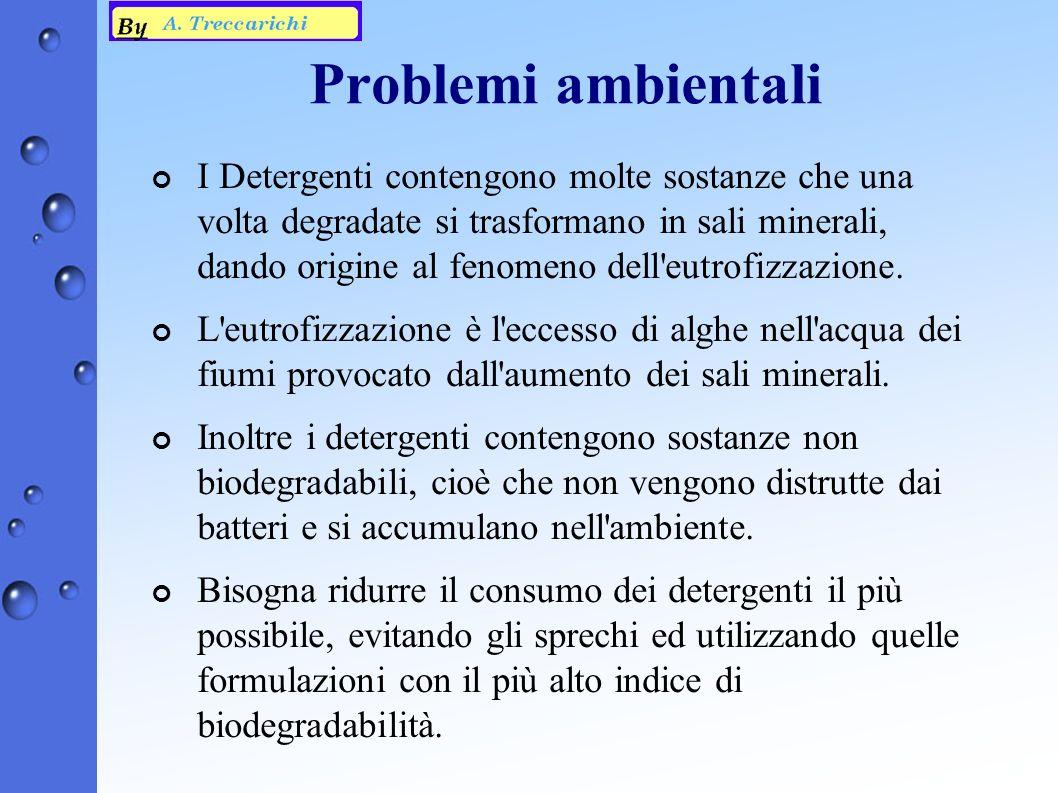 Problemi ambientali ¢ I Detergenti contengono molte sostanze che una volta degradate si trasformano in sali minerali, dando origine al fenomeno dell eutrofizzazione.