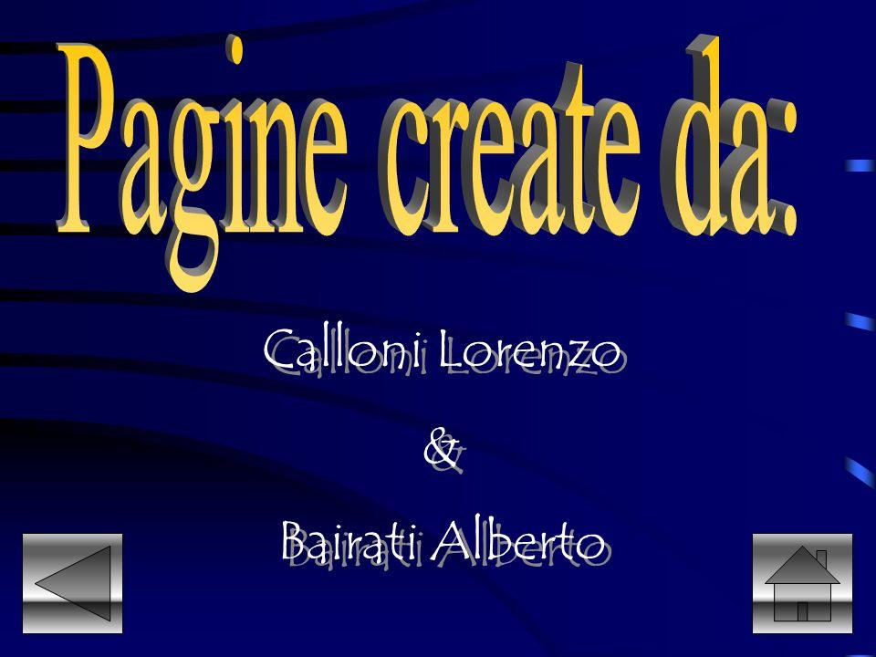 Calloni Lorenzo & Bairati Alberto Calloni Lorenzo & Bairati Alberto