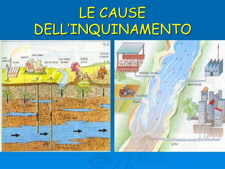 LE CAUSE DELLINQUINAMENTO