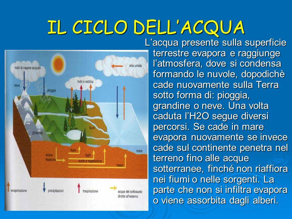 IL CICLO DELLACQUA Lacqua presente sulla superficie terrestre evapora e raggiunge latmosfera, dove si condensa formando le nuvole, dopodichè cade nuov
