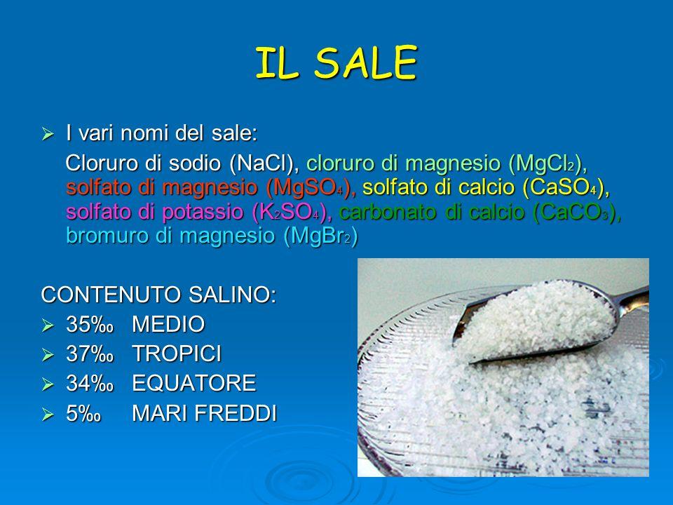 IL SALE I vari nomi del sale: Cloruro di sodio (NaCl), cloruro di magnesio (MgCl2), solfato di magnesio (MgSO4), solfato di calcio (CaSO4), solfato di
