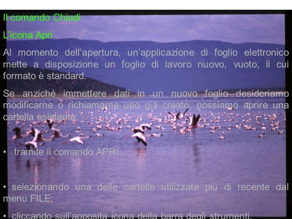 Il comando Chiudi Licona Apri Al momento dellapertura, unapplicazione di foglio elettronico mette a disposizione un foglio di lavoro nuovo, vuoto, il cui formato è standard.