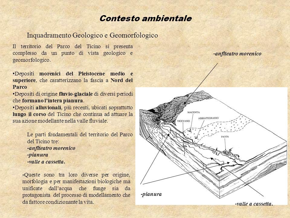 Inquadramento Geologico e Geomorfologico Il territorio del Parco del Ticino si presenta complesso da un punto di vista geologico e geomorfologico. Dep