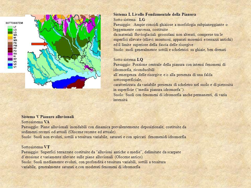 Sistema V Pianure alluvionali Sottosistema VA Paesaggio: Piane alluvionali inondabili con dinamica prevalentemente deposizionale, costituite da sedime