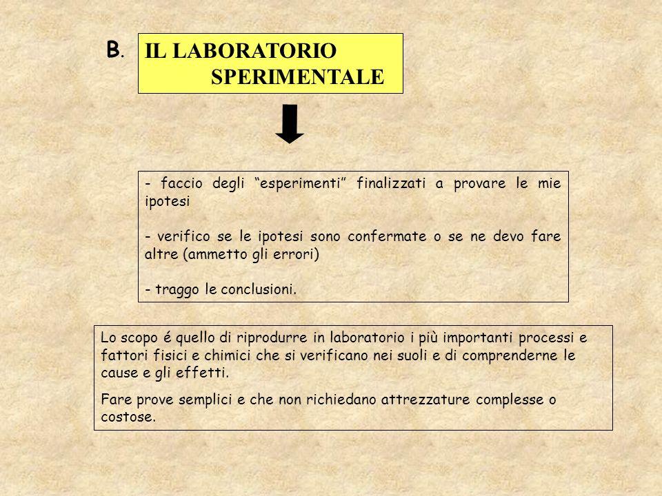 - faccio degli esperimenti finalizzati a provare le mie ipotesi - verifico se le ipotesi sono confermate o se ne devo fare altre (ammetto gli errori)