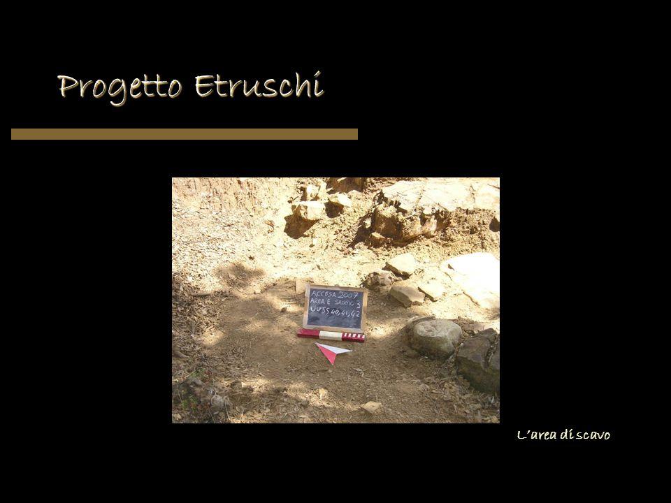 Progetto Etruschi Larea di scavo