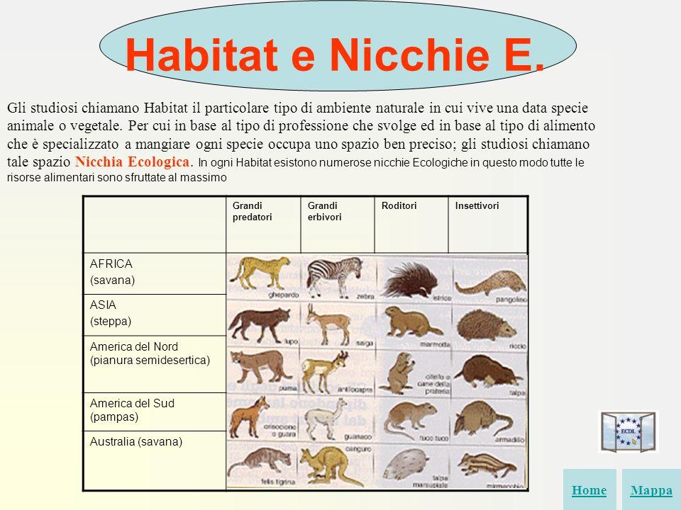Habitat e Nicchie E. Gli studiosi chiamano Habitat il particolare tipo di ambiente naturale in cui vive una data specie animale o vegetale. Per cui in