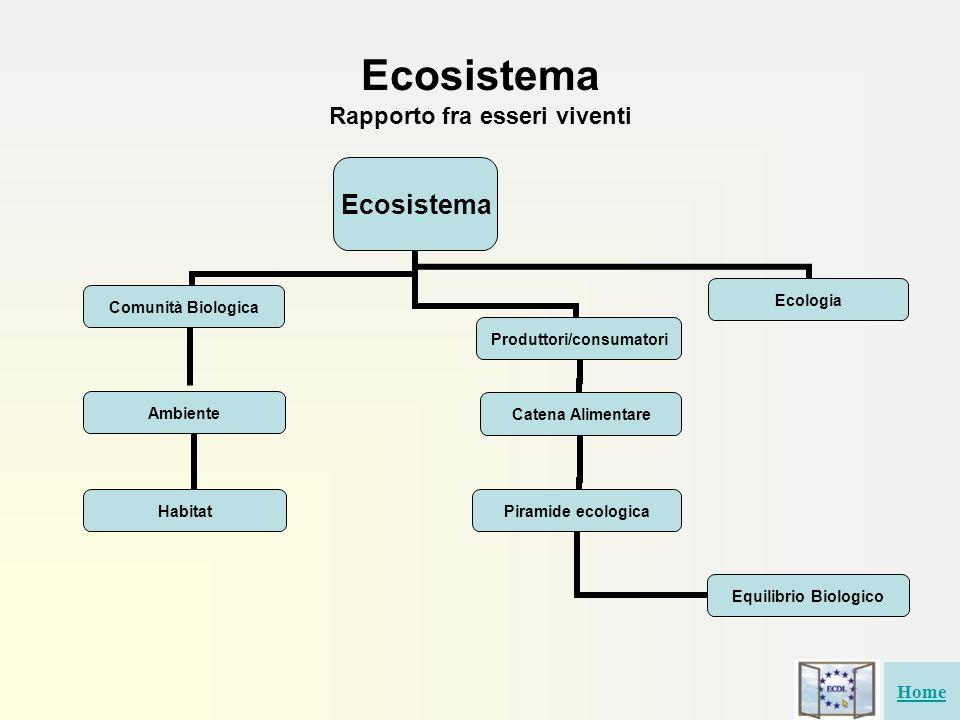 Ecosistema Rapporto fra esseri viventi Ecosistema Comunità Biologica Ambiente Habitat Catena Alimentare Piramide ecologica Equilibrio Biologico Ecolog