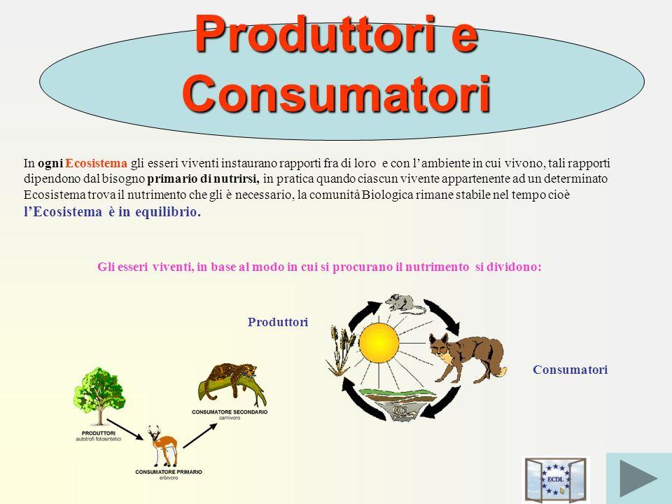 Produttori e Consumatori In ogni Ecosistema gli esseri viventi instaurano rapporti fra di loro e con lambiente in cui vivono, tali rapporti dipendono