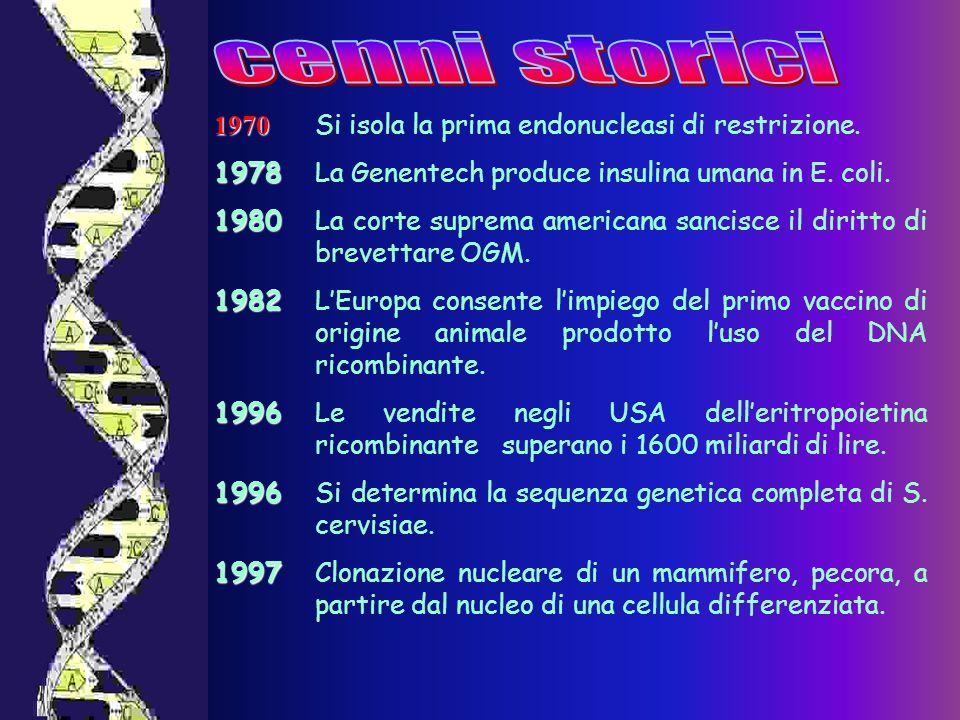1970 1970 Si isola la prima endonucleasi di restrizione. 1978 1978La Genentech produce insulina umana in E. coli. 1980 1980La corte suprema americana