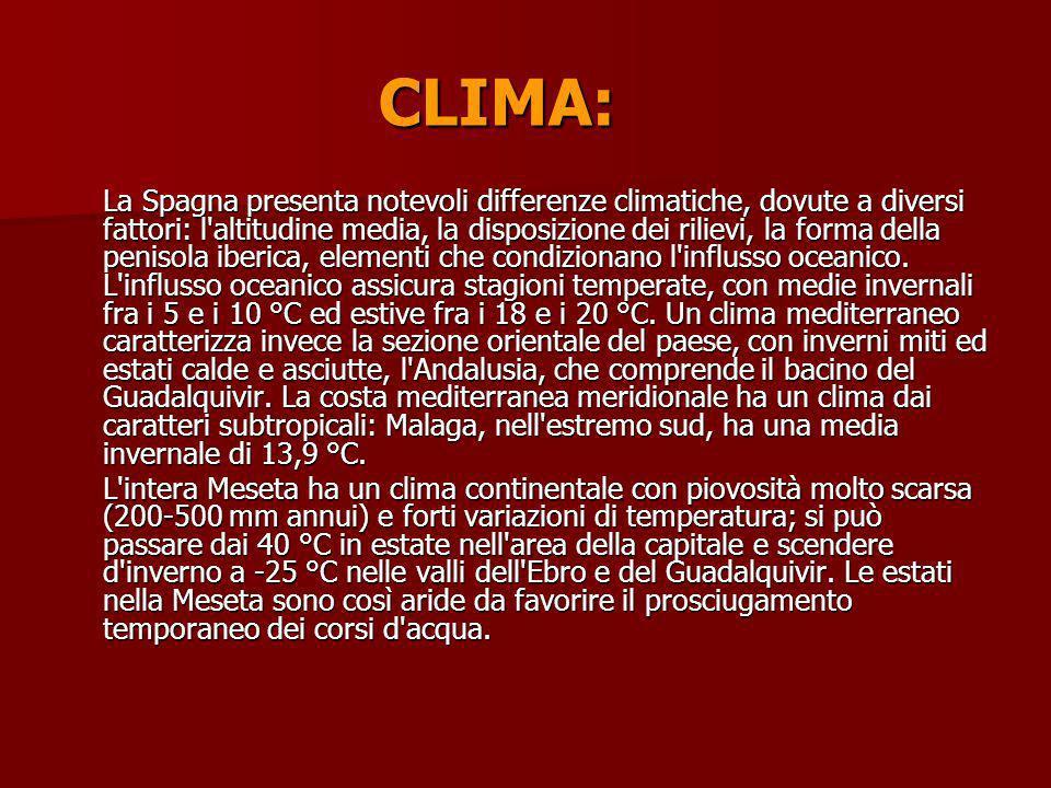 CLIMA: La Spagna presenta notevoli differenze climatiche, dovute a diversi fattori: l'altitudine media, la disposizione dei rilievi, la forma della pe
