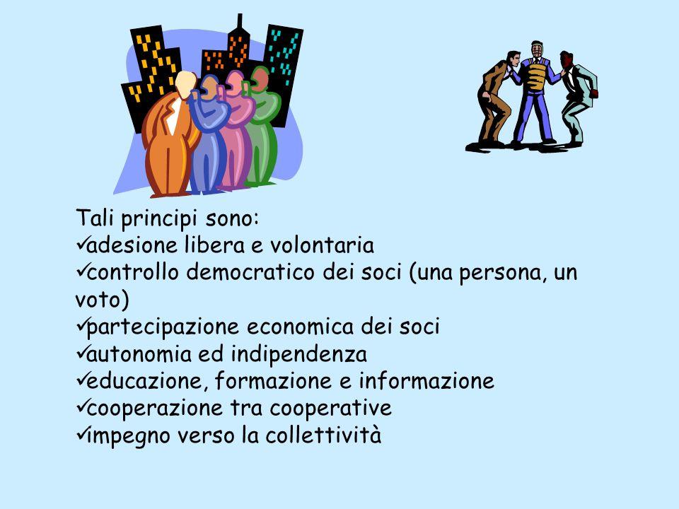 Tali principi sono: adesione libera e volontaria controllo democratico dei soci (una persona, un voto) partecipazione economica dei soci autonomia ed indipendenza educazione, formazione e informazione cooperazione tra cooperative impegno verso la collettività