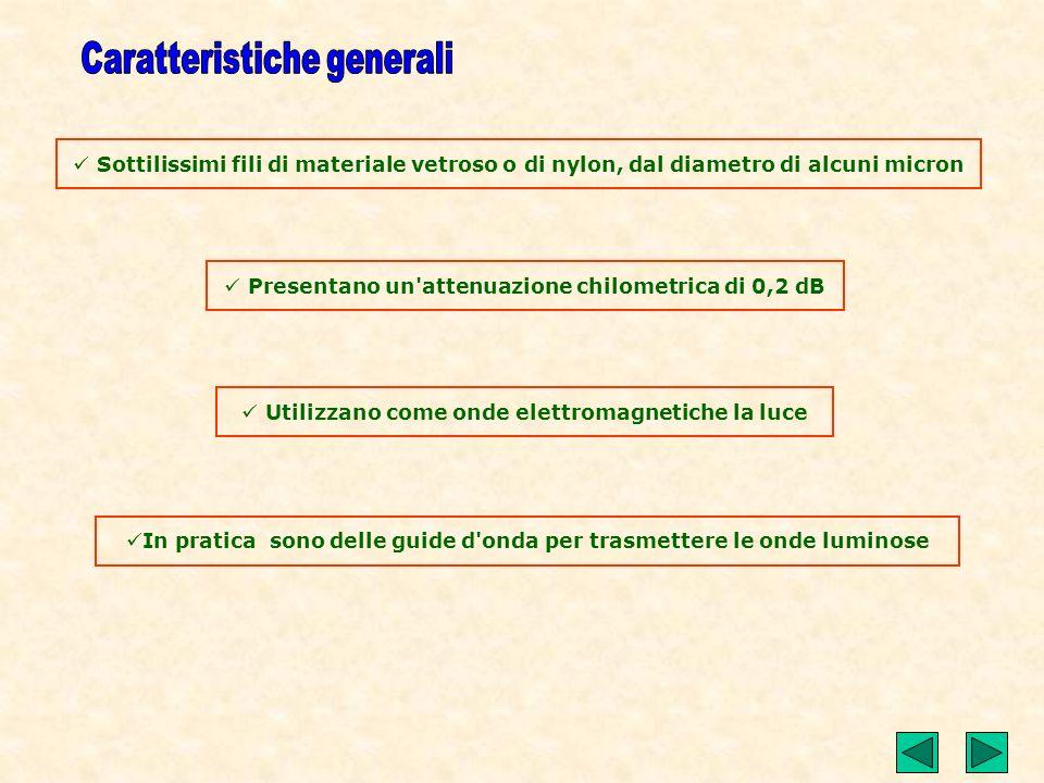 Sommario Caratteristiche generali Richiami di ottica Struttura e realizzazione tecnologica Apertura numerica Esercizio di chiarimento