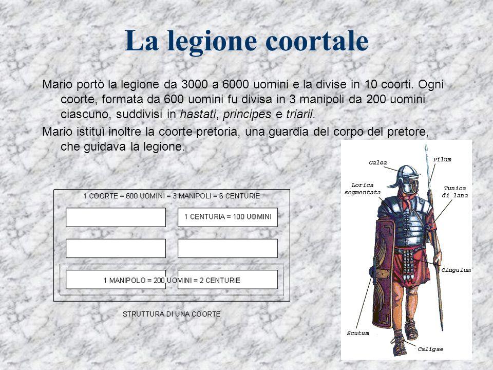 La legione coortale Mario portò la legione da 3000 a 6000 uomini e la divise in 10 coorti. Ogni coorte, formata da 600 uomini fu divisa in 3 manipoli