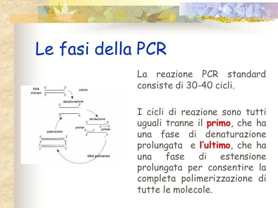 La PCR La PCR può essere definita come una reazione damplificazione in vitro di un segmento specifico per mezzo di un enzima. Nella reazione sono coin