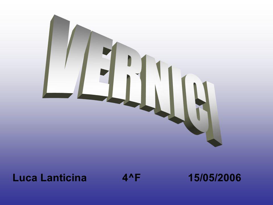 Luca Lanticina 4^F 15/05/2006