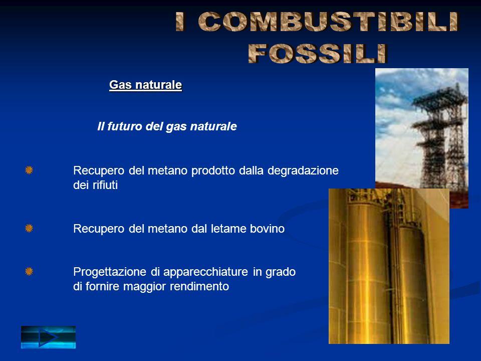 Impiego dei combustibili fossili e di altre fonti di energia