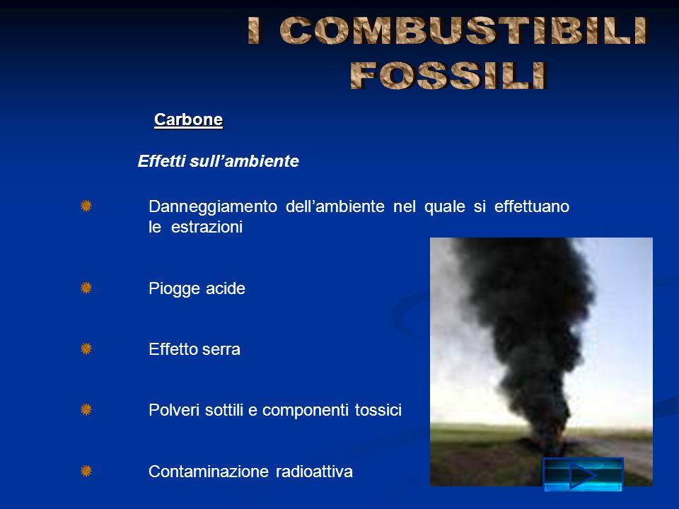 Danneggiamento dellambiente nel quale si effettuano le estrazioni Piogge acide Effetto serra Polveri sottili e componenti tossici Contaminazione radio