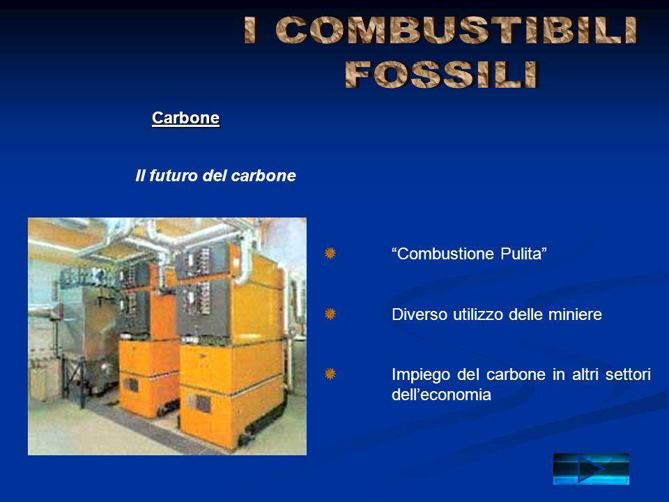 Combustione Pulita Diverso utilizzo delle miniere Impiego del carbone in altri settori dell economia Il futuro del carbone Carbone