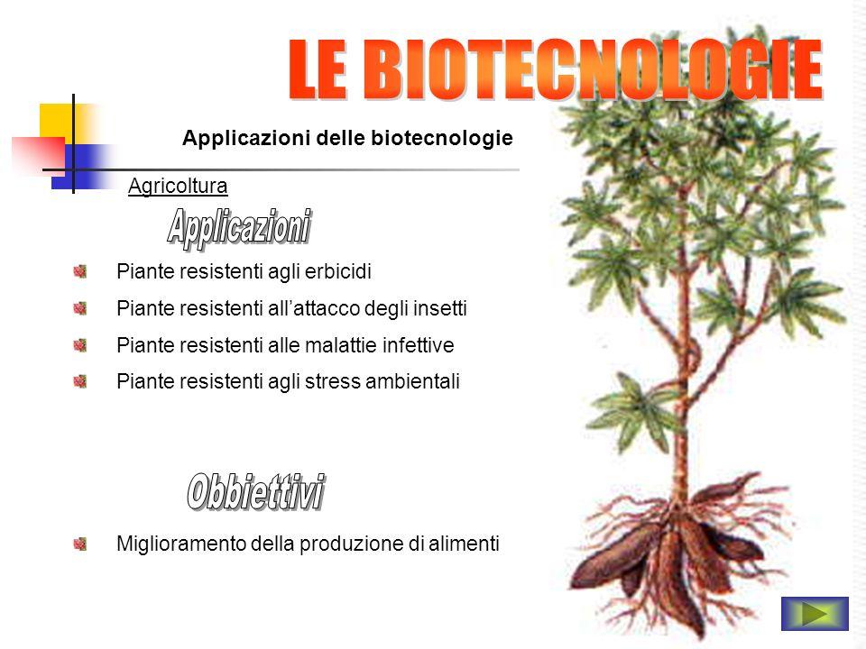 Applicazioni delle biotecnologie Agricoltura Piante resistenti agli erbicidi Piante resistenti allattacco degli insetti Piante resistenti alle malatti