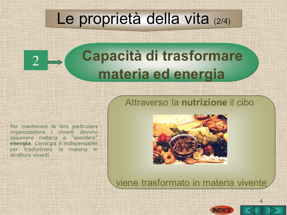 4 Capacità di trasformare materia ed energia 2 Per mantenere la loro particolare organizzazione i viventi devono assumere materia e spendere energia.