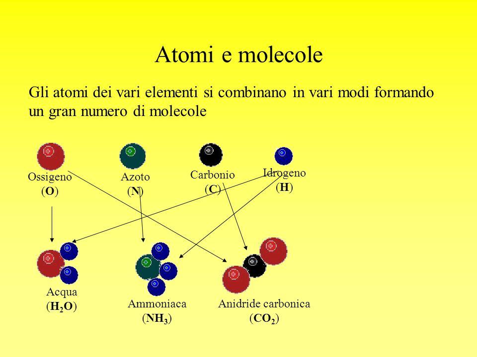 Atomi e molecole Gli atomi dei vari elementi si combinano in vari modi formando un gran numero di molecole Ossigeno (O) Azoto (N) Carbonio (C) Idrogen