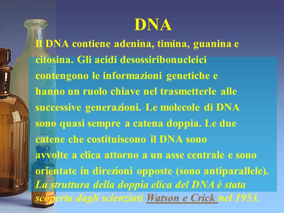 DNA Il DNA contiene adenina, timina, guanina e citosina. Gli acidi desossiribonucleici contengono le informazioni genetiche e hanno un ruolo chiave ne