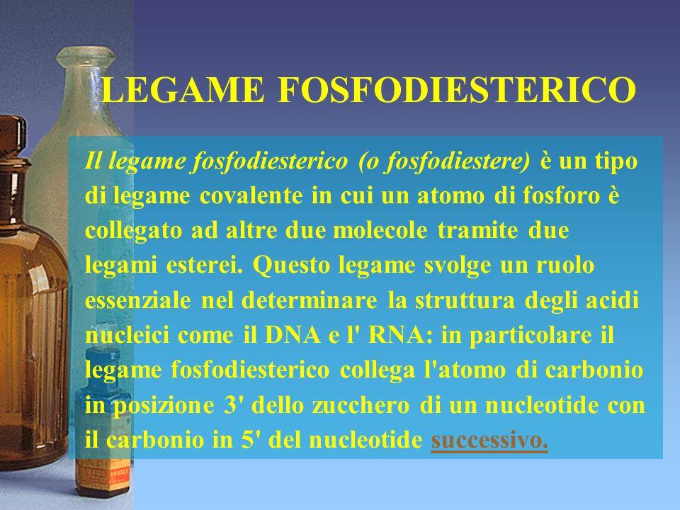 LEGAME FOSFODIESTERICO Il legame fosfodiesterico (o fosfodiestere) è un tipo di legame covalente in cui un atomo di fosforo è collegato ad altre due m