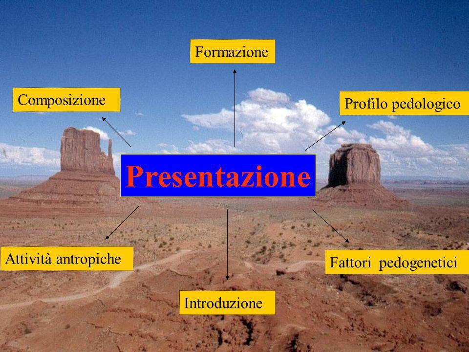 Composizione Introduzione Profilo pedologico Fattori pedogenetici Attività antropiche Formazione Presentazione